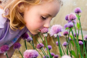 Researchers believe the way we smell could lead to a test for autism, according to a new report. Image Credit: DaiPhoto