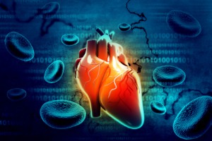 New research has strengthened the link between kidney disease and heart disease. Image Credit: HYWARDS