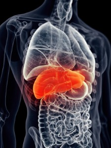 The International Liver Congress 2016 has highlighted that significant progress is being made with regard to treating liver disease. Image: Eraxion via iStock