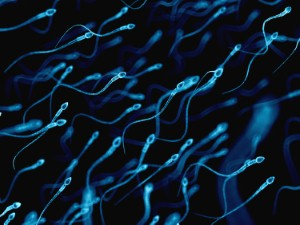 Could physiotherapy help boost sperm