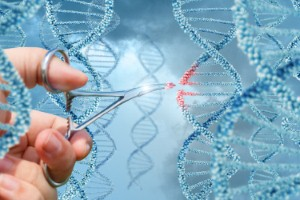 UK-based scientists have developed a new drug that could help to prevent the onset of Huntingtons disease.