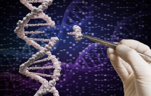 A genetic editing technique has been proven to be effective in restoring hearing function in mice with genetic hearing loss in a recent investigation. Image: vchal via iStock