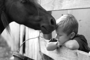 A horse is playing a key role in helping an occupational therapist treat children in Northern Ireland.
