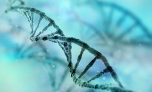 DNA hitherto thought to have no purpose is to be the subject of new research into heart disease.
