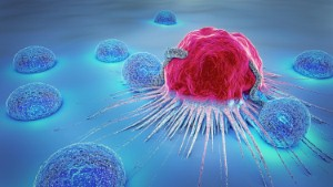 A new 3D model of cancer cells has been created by scientists in Cambridge.